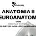 anatomia 2 neuroanatomia